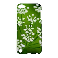 Queen Anne s Lace Apple Ipod Touch 5 Hardshell Case by Siebenhuehner