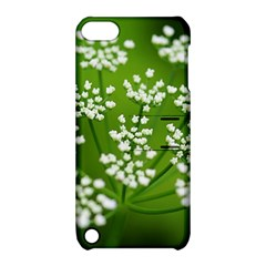 Queen Anne s Lace Apple Ipod Touch 5 Hardshell Case With Stand by Siebenhuehner