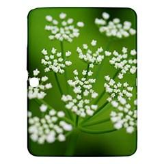 Queen Anne s Lace Samsung Galaxy Tab 3 (10 1 ) P5200 Hardshell Case  by Siebenhuehner