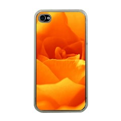 Rose Apple Iphone 4 Case (clear) by Siebenhuehner