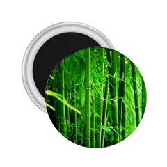 Bamboo 2 25  Button Magnet by Siebenhuehner
