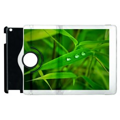 Bamboo Leaf With Drops Apple Ipad 2 Flip 360 Case by Siebenhuehner