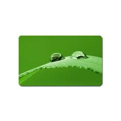 Waterdrops Magnet (name Card) by Siebenhuehner