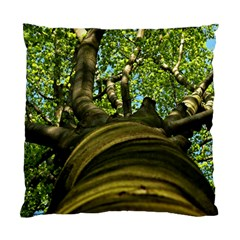 Tree Cushion Case (two Sided)  by Siebenhuehner