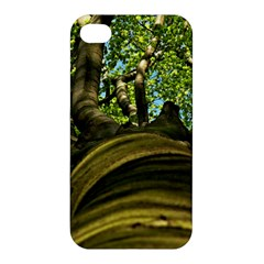 Tree Apple Iphone 4/4s Premium Hardshell Case by Siebenhuehner