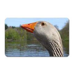 Geese Magnet (rectangular) by Siebenhuehner