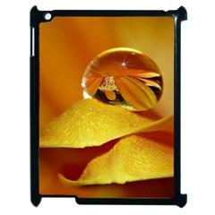 Drops Apple iPad 2 Case (Black) by Siebenhuehner