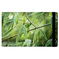 Bamboo Apple Ipad 2 Flip Case by Siebenhuehner