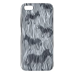 Where s The Zebra? Iphone 5 Premium Hardshell Case by Contest1736674