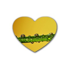 Drops Drink Coasters 4 Pack (heart)  by Siebenhuehner