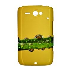 Drops HTC ChaCha / HTC Status Hardshell Case  by Siebenhuehner