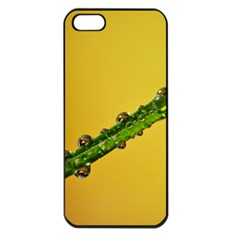Drops Apple Iphone 5 Seamless Case (black) by Siebenhuehner
