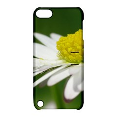 Daisy With Drops Apple Ipod Touch 5 Hardshell Case With Stand by Siebenhuehner