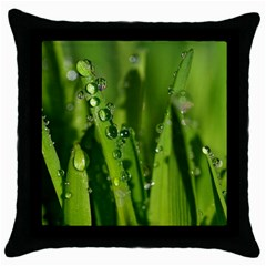 Grass Drops Black Throw Pillow Case by Siebenhuehner