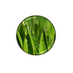 Grass Drops Golf Ball Marker 4 Pack (for Hat Clip) by Siebenhuehner