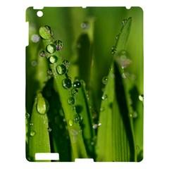 Grass Drops Apple Ipad 3/4 Hardshell Case by Siebenhuehner