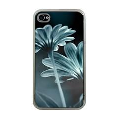 Osterspermum Apple Iphone 4 Case (clear) by Siebenhuehner