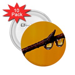 Tree Drops  2 25  Button (10 Pack) by Siebenhuehner