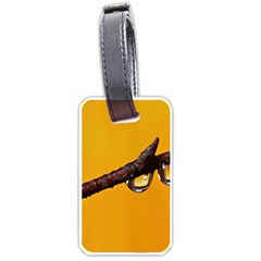 Tree Drops  Luggage Tag (two Sides) by Siebenhuehner