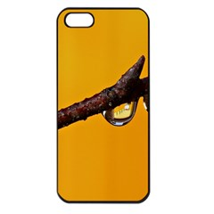 Tree Drops  Apple Iphone 5 Seamless Case (black) by Siebenhuehner