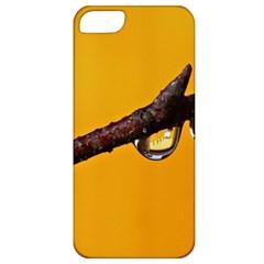 Tree Drops  Apple Iphone 5 Classic Hardshell Case by Siebenhuehner