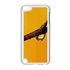 Tree Drops  Apple Ipod Touch 5 Case (white)