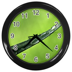 Green Drops Wall Clock (black) by Siebenhuehner