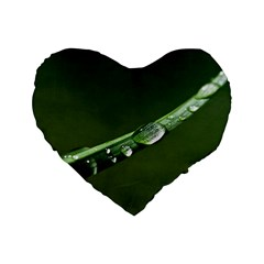 Grass Drops 16  Premium Heart Shape Cushion