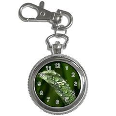 Grass Drops Key Chain & Watch by Siebenhuehner