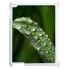 Grass Drops Apple Ipad 2 Case (white) by Siebenhuehner