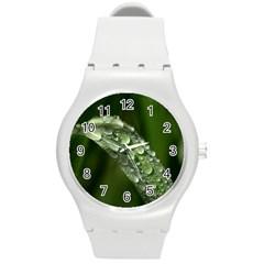 Grass Drops Plastic Sport Watch (medium) by Siebenhuehner
