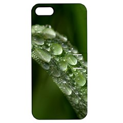 Grass Drops Apple Iphone 5 Hardshell Case With Stand by Siebenhuehner