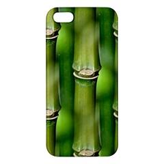 Bamboo Iphone 5s Premium Hardshell Case by Siebenhuehner