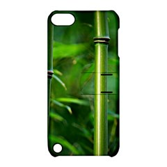 Bamboo Apple Ipod Touch 5 Hardshell Case With Stand by Siebenhuehner