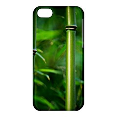 Bamboo Apple Iphone 5c Hardshell Case by Siebenhuehner