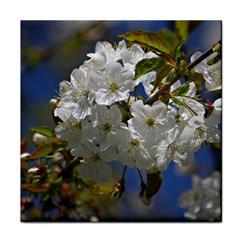 Cherry Blossom Ceramic Tile by Siebenhuehner