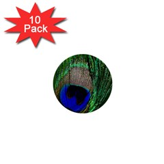 Peacock 1  Mini Button (10 Pack) by Siebenhuehner