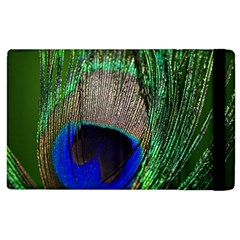 Peacock Apple Ipad 3/4 Flip Case by Siebenhuehner