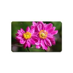 Flower Magnet (name Card) by Siebenhuehner