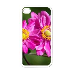Flower Apple Iphone 4 Case (white) by Siebenhuehner