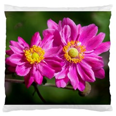 Flower Large Cushion Case (single Sided)  by Siebenhuehner