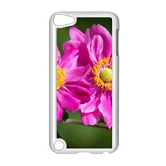 Flower Apple Ipod Touch 5 Case (white) by Siebenhuehner