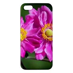 Flower Iphone 5s Premium Hardshell Case by Siebenhuehner