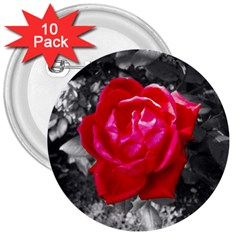 Red Rose 3  Button (10 Pack) by jotodesign