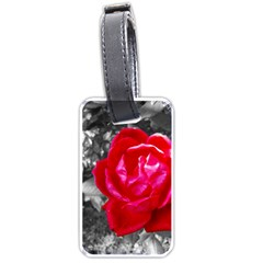 Red Rose Luggage Tag (one Side) by jotodesign