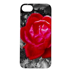 Red Rose Apple Iphone 5s Hardshell Case by jotodesign