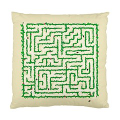 A Maze    Cushion Case (two Sided)  by Contest1729022