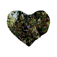 Australia Bird 16  Premium Heart Shape Cushion  by Contest1852090