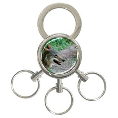 Red Wolf 3 Ring Key Chain by AnimalLover