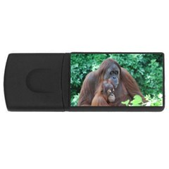 Orangutan Family 4GB USB Flash Drive (Rectangle) by AnimalLover